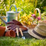 Na čo nezabudnúť v jarnej záhradke?