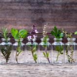 4 tipy na prírodné osviežovače vzduchu do domácnosti